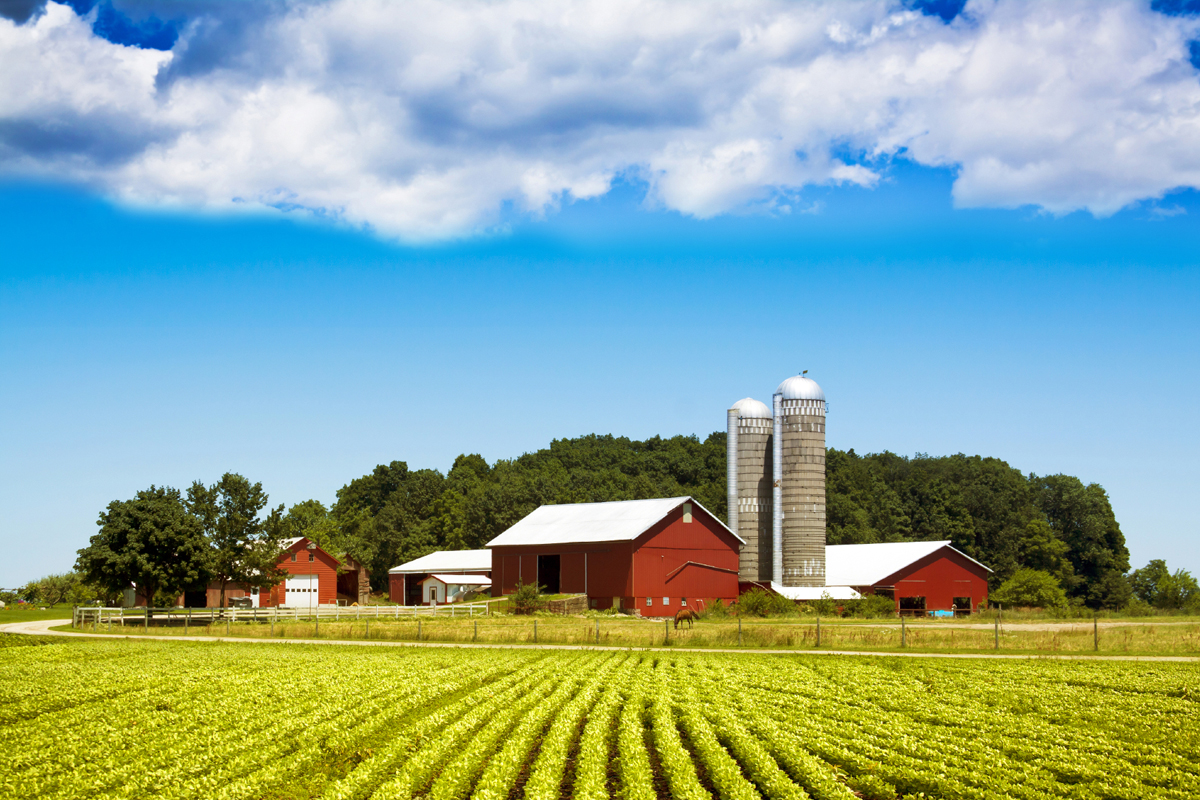 Vacation time 4 reasons to try a farm to table trip eat for Ranch and rural living
