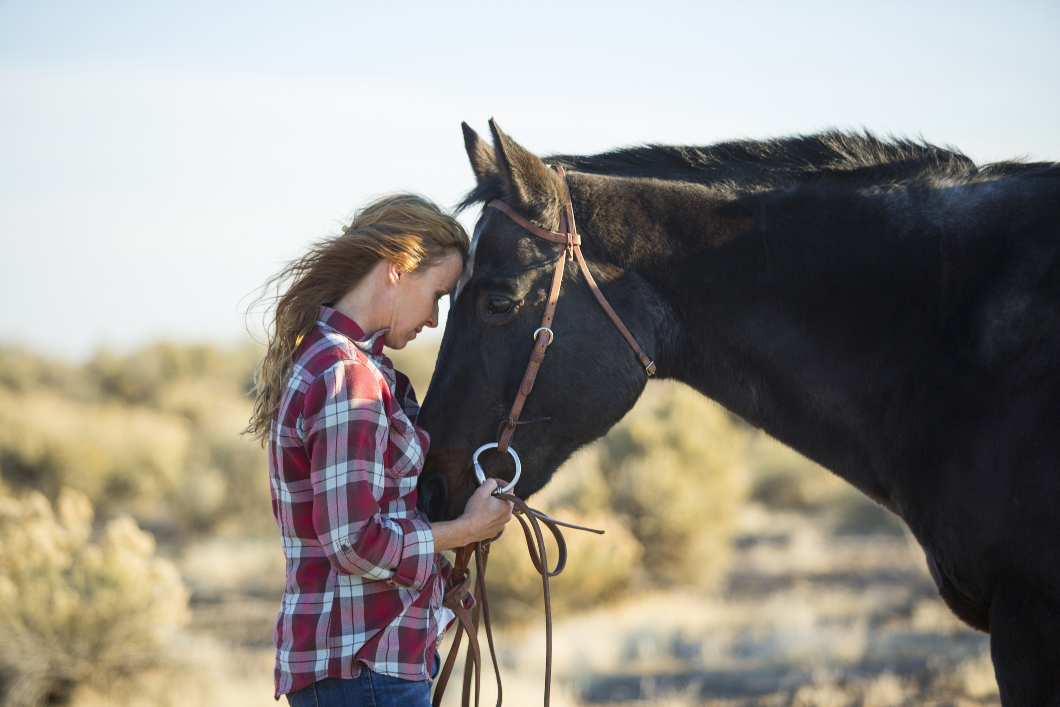 the passion to heal and help mankind Indigo trails holistic health & horse centered coaching meet stacey bean a qualified guide for your journey i have a passion for life and for helping  heal from.