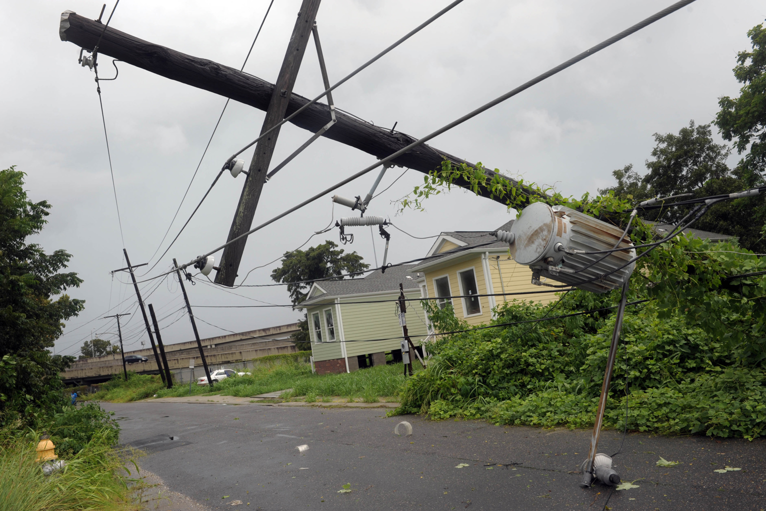 Electric Poles Power Lines : Good wood trade group stands up for utility poles civic