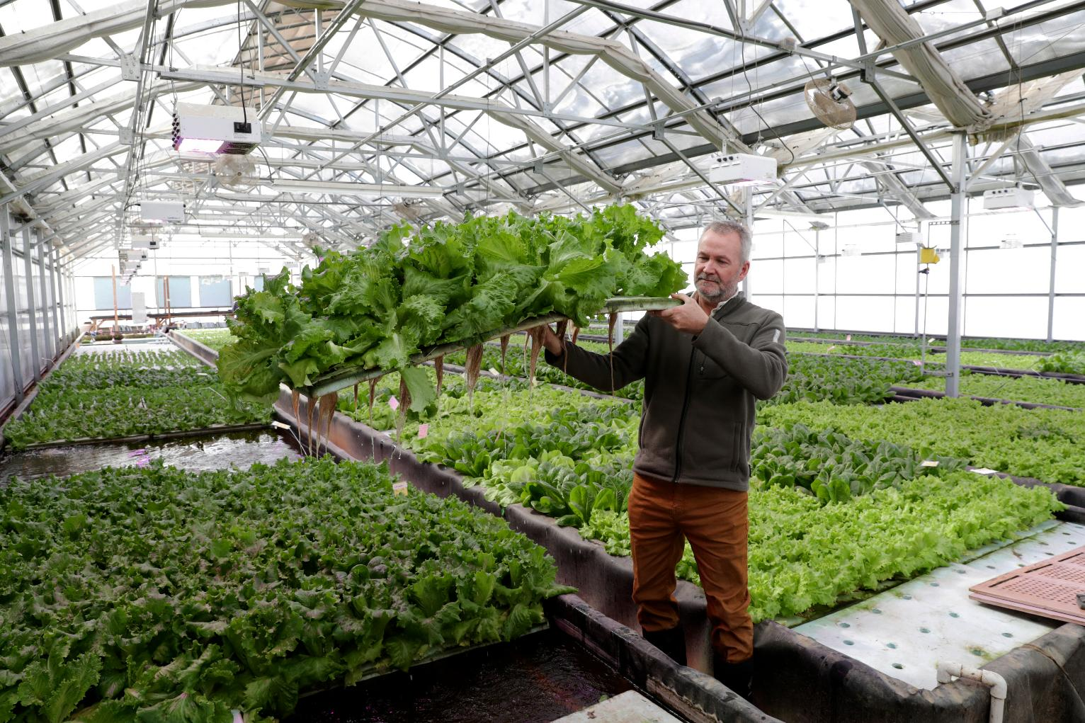 Wisconsin producers turn to aquaponics farming wisconsin for Wisconsin fish farms