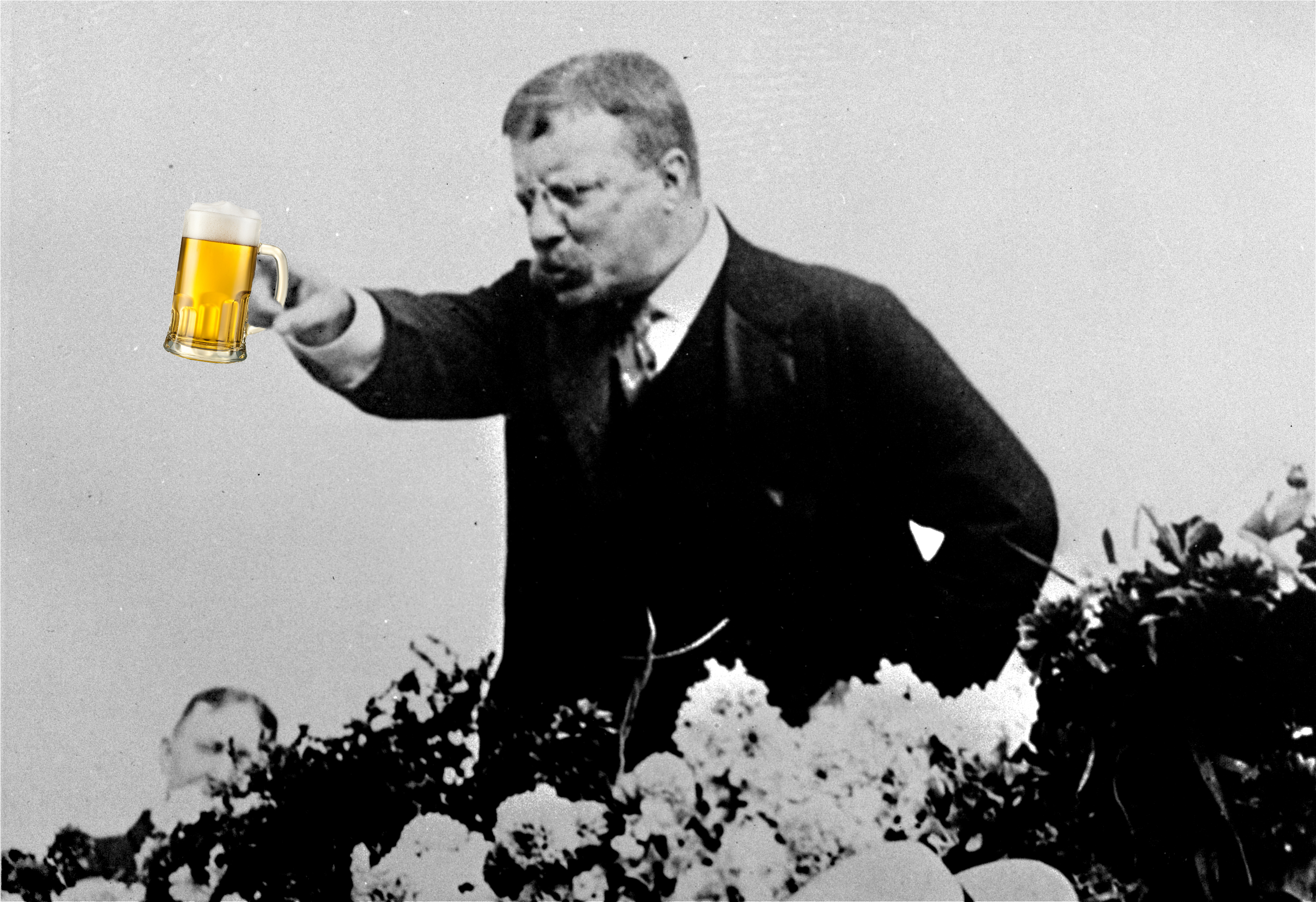 an analysis of the evian conference by president theodore roosevelt