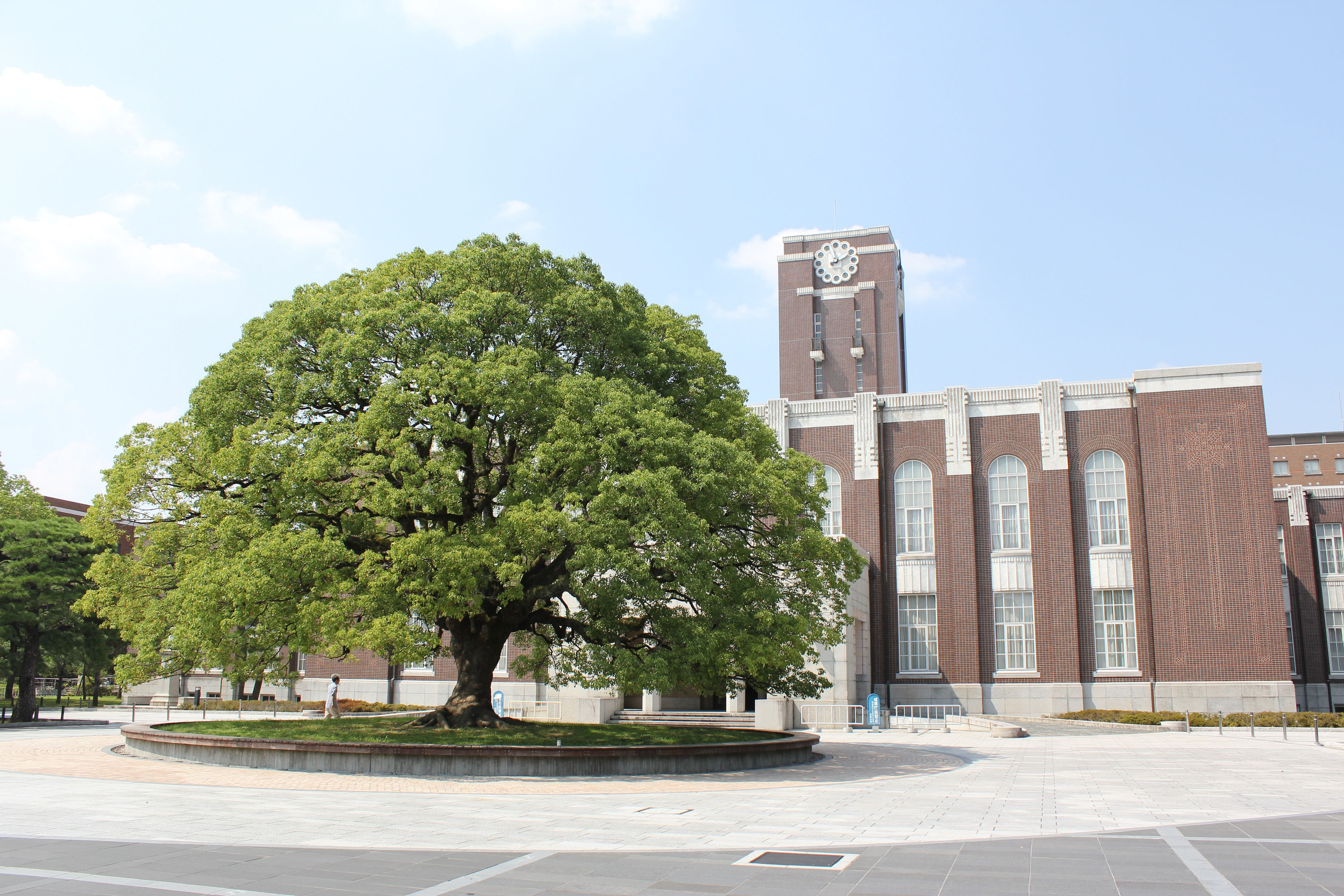 Image result for Kyoto University